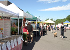 Stapleton Farmers Market