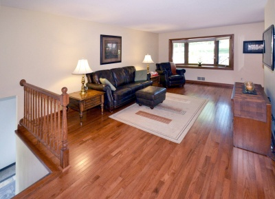 13601_james_avenue_south_mls_hid817083_roomentrywaylivingroom_400