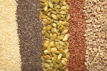 学习如何收获和处理种子10月20日