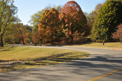 Scenic Loop in Cherokee Park Louisville KY