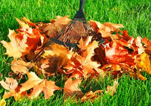 Autumn Louisville Ky