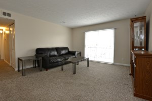 106 Algiers Ct #8 Living Room