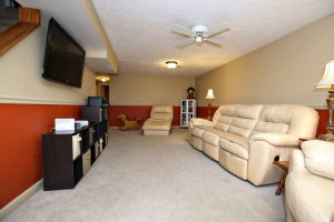 1102 Cliffwood Dr Basement