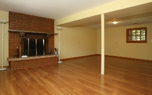 1135 Basement Family Room