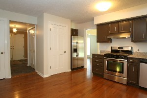 14108 Beckley Woods Kitchen