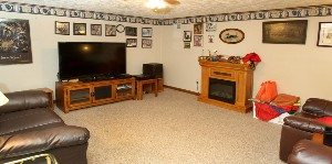 205 Militia Basement Family Room