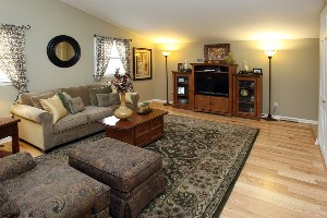 4013 Hillbrook Living Room