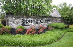 Spring Creek Homes For Sale