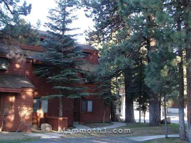 Mammoth Condo HOA Fees Woodlands Condos for Sale