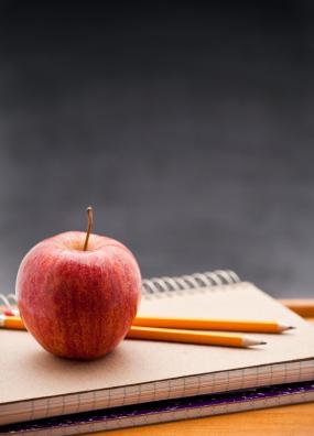 How to choose a Denver school