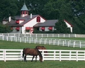 Lexington KY Real Estate