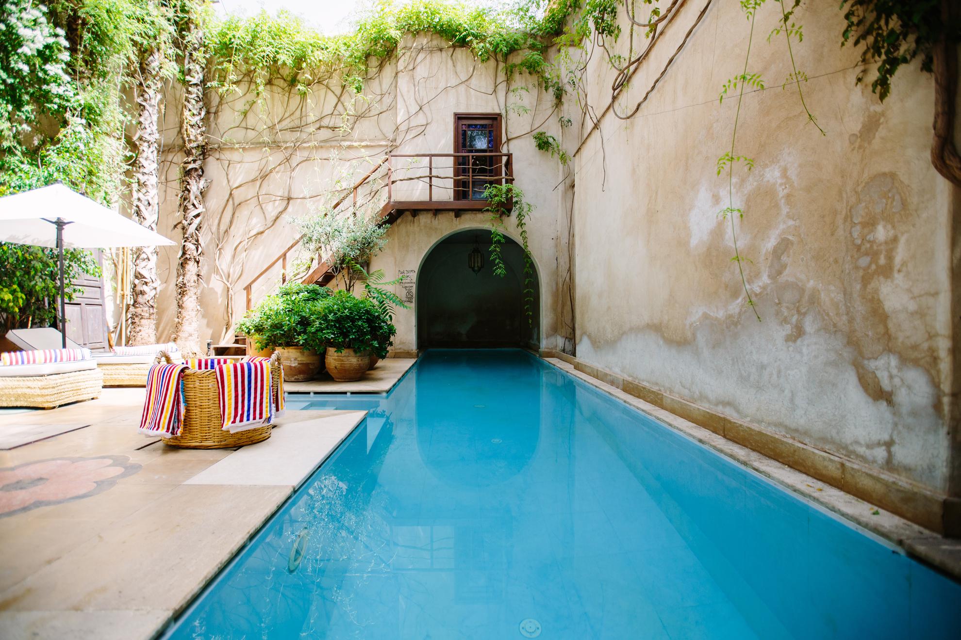 Luxury Backyard Photo