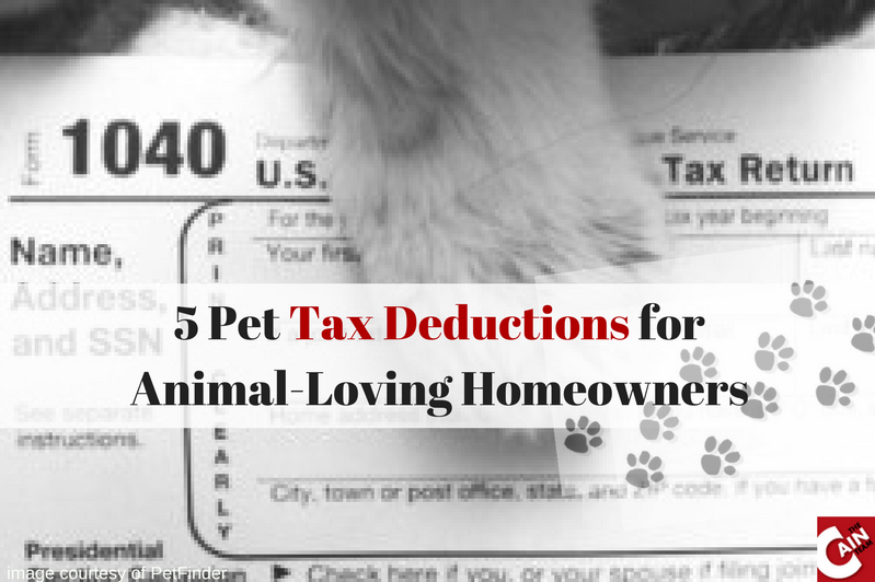 5 Pet Tax Deductions for Animal-Loving Homeowners
