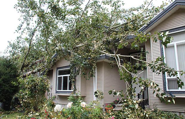 calgary-property-damage