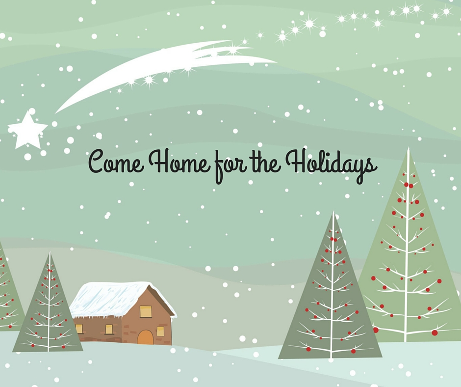 Come Home for the Holidays Winter Image