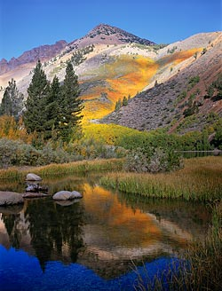 Mammoth Lakes Fall Colors