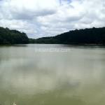 Murphey Candler Park lake
