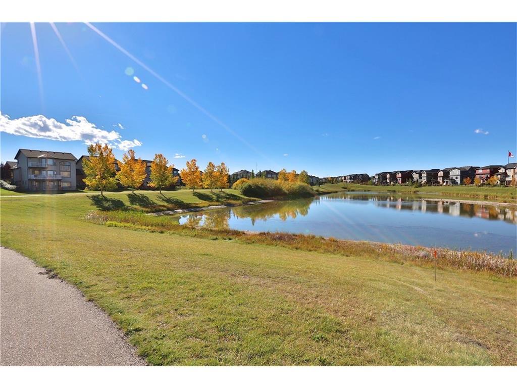 Cougar Ridge real estate