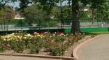 Orange Groove Park