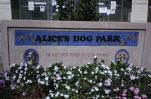 Pasadena Off-Leash Dog Park