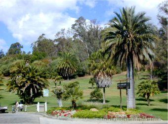 elysian park 600 acre preserve in Elysian Heights