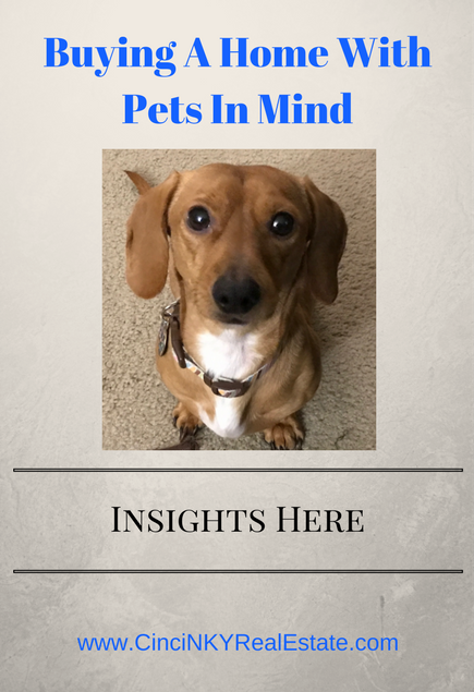 buying a home with pets in mind