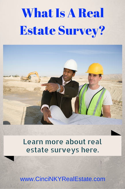 what is a real estate survey