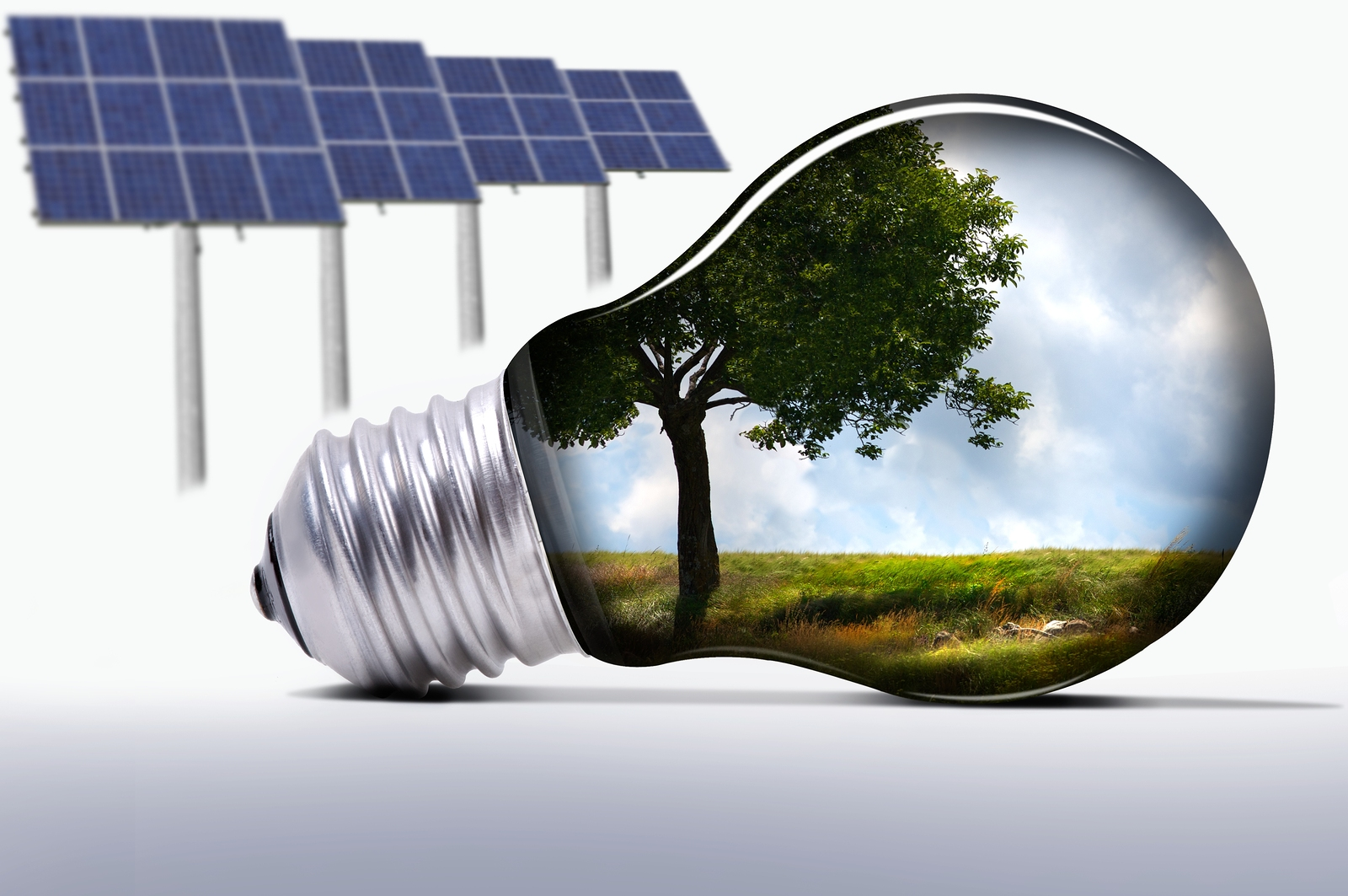 solar panels and a bulb with a green natural scene in it