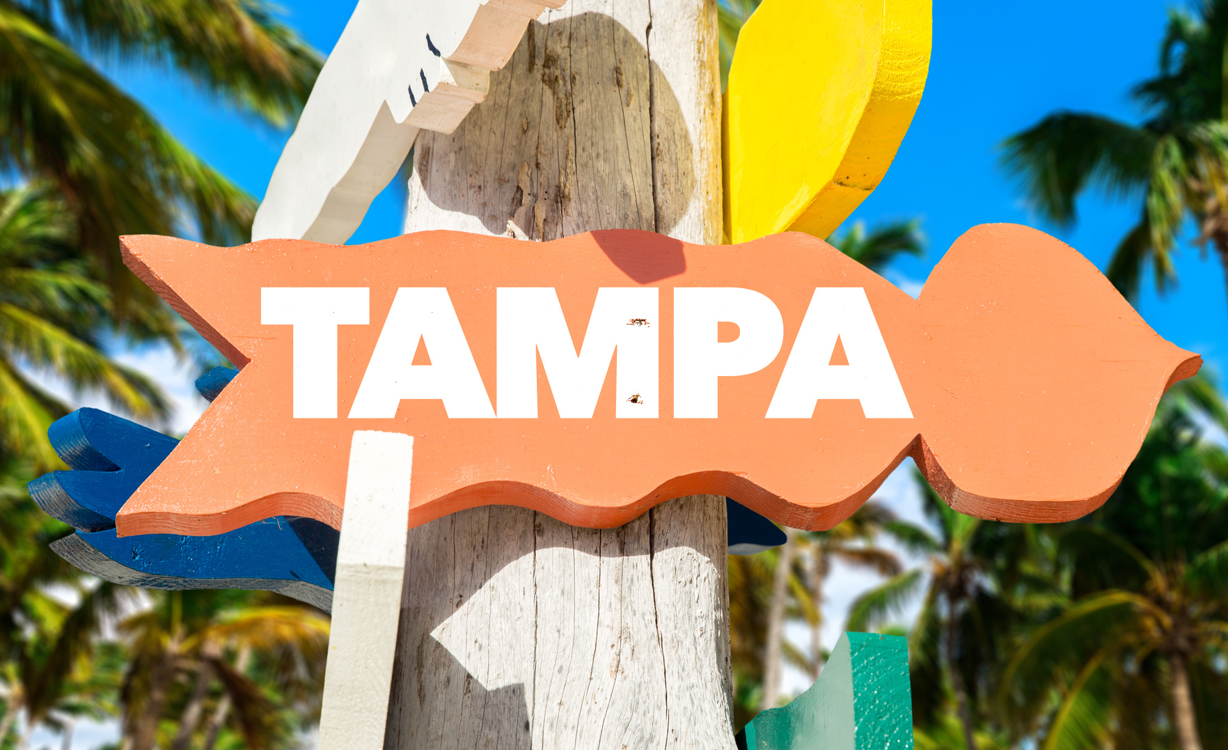 Buying Mansions for Sale in Tampa, Florida
