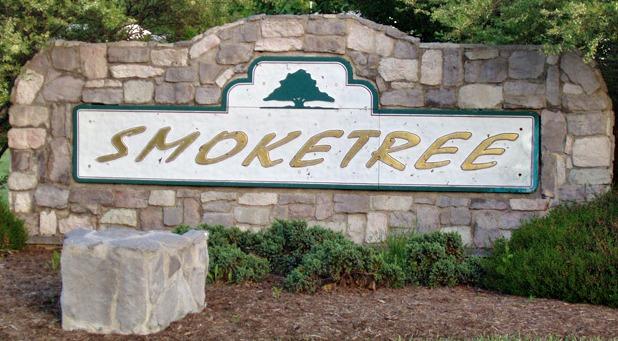 Smoketree Homes for Sale - Richmond Realtor RVA Home Team