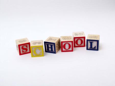Which Public Schools Serve the Perth Amboy Area?