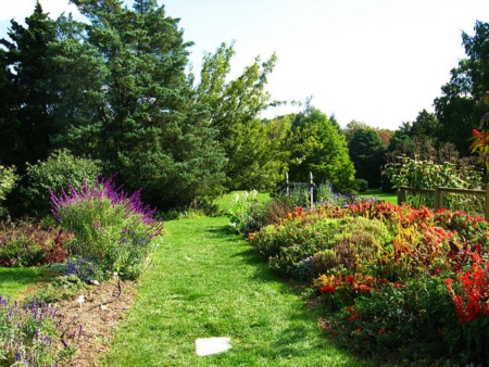 What might you Discover at the Rutgers Gardens?