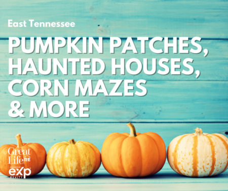 2021 Pumpkin Patches, Corn Mazes, & Haunted Houses