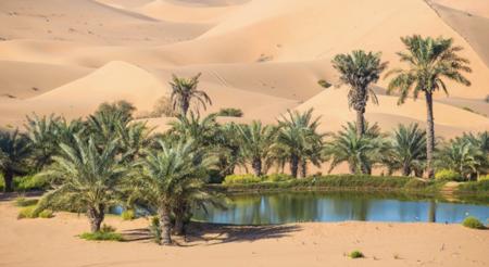 Su Casa Podría Ser Un Oasis En Un Desierto Sin Inventario