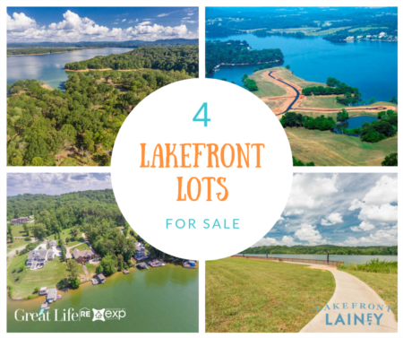 4 Lakefront Lots For Sale