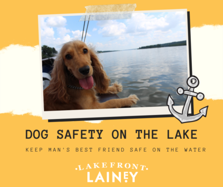 Dog Safety At The Lake