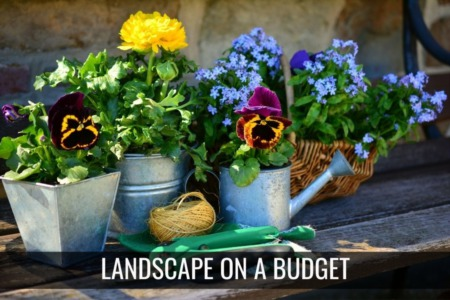 How to Landscape on a Budget In Connecticut