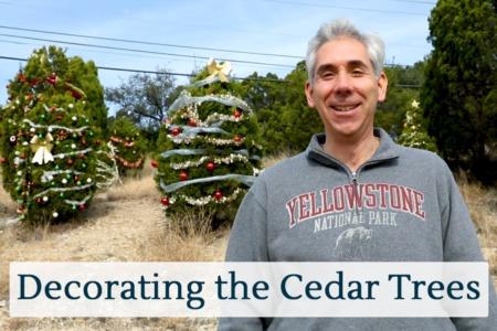 Discover Austin: Decorating the Cedar Trees - Episode 27