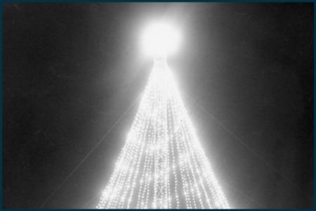 Vintage Austin: Zilker Christmas Tree