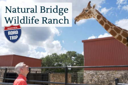 Discover Austin: Natural Bridge Wildlife Ranch - Episode 80
