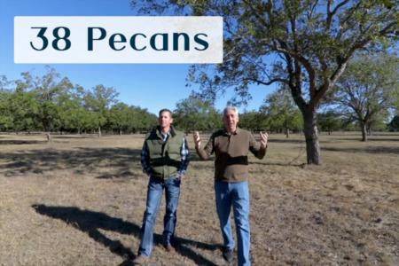 Discover Steiner Ranch: 38 Pecans