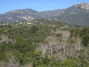 Santa Barbara CA Neighborhoods - Mission Canyon