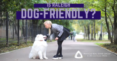 Is Raleigh Dog-Friendly?: The Best Places to Take Your Dog in Raleigh, NC