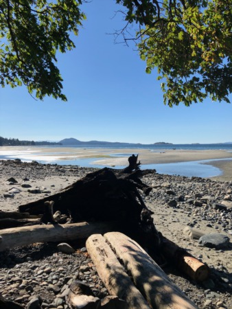 Local Insights:  How to get to Blueback Beach in Nanaimo
