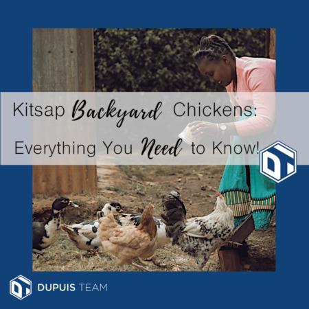 Kitsap Backyard Chickens!  Bwak bwak . . .