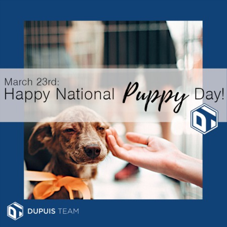 Dupuis Team says:  Happy Puppy Day