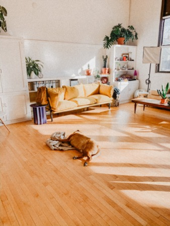 Hot Flooring Trends for Homeowners