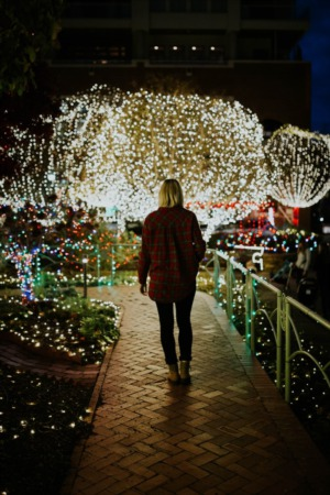 Should You DIY Your Holiday Lighting?