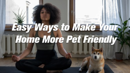 Easy Ways to Make Your Home More Pet Friendly