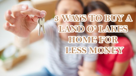3 Ways to Buy a Land O'Lakes  Home for Less Money